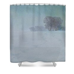 The Last Snow Shower Curtain by Lynn Bywaters