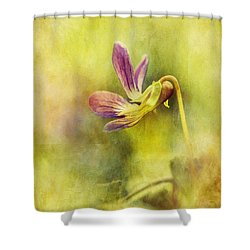 The Last Violet Shower Curtain by Lois Bryan