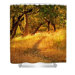 The Late Afternoon Walk Shower Curtain