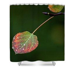 The Latter Rain  Shower Curtain by Jim Garrison