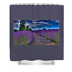 The Lavender Field Shower Curtain