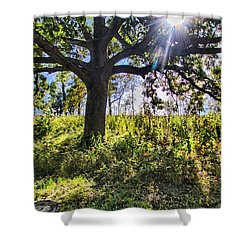 The Learning Tree Shower Curtain