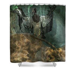 The Lecturer Shower Curtain by Jack Zulli