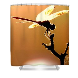 The Light Of Flight Upon The Mosquito Hawk At The Mississippi River In New Orleans Louisiana Shower Curtain by Michael Hoard