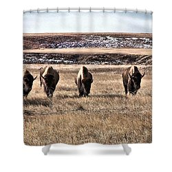 The Lineup Shower Curtain