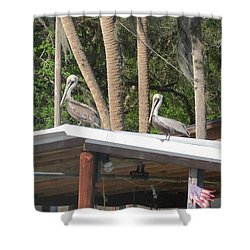 Shower Curtain featuring the photograph The Lineup by Fortunate Findings Shirley Dickerson