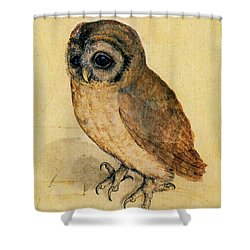The Little Owl Shower Curtain by Albrecht Durer