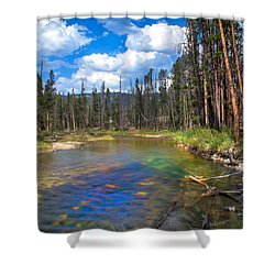 The Little Redfish Creek Shower Curtain by Robert Bales