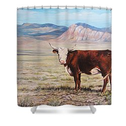 The Lone Range Shower Curtain by Donna Tucker