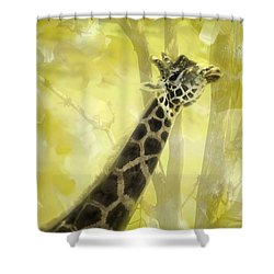 The Long Morning Stretch Shower Curtain by Diane Schuster