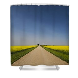 The Long Road Shower Curtain
