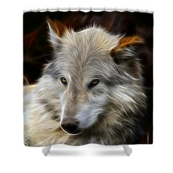 The Look Shower Curtain by Steve McKinzie