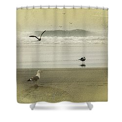 The Love Triangle Shower Curtain by Diane Schuster