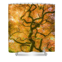 The Magic Forest-15 Shower Curtain