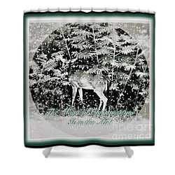 Shower Curtain featuring the photograph The Magic Of Christmastime In A Woodland by Kimberlee Baxter