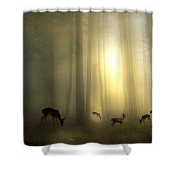 The Magic Of Sunrise Shower Curtain
