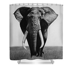 The Magnificent One Shower Curtain
