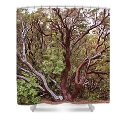The Manzanita Tree Shower Curtain