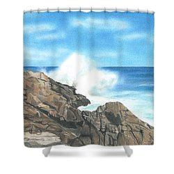 The Marginal Way Shower Curtain