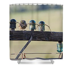 The Master Of Disguise Shower Curtain by Mircea Costina Photography