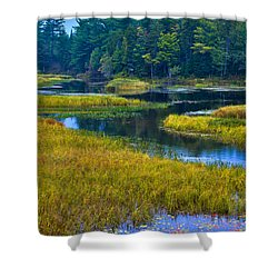 The Meandering Moose River - Old Forge New York Shower Curtain by David Patterson