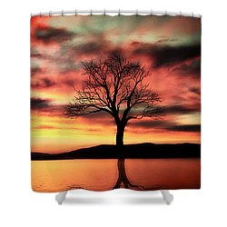 The Memory Tree Shower Curtain by Ally  White