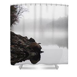 The Mist Shower Curtain by Dana DiPasquale