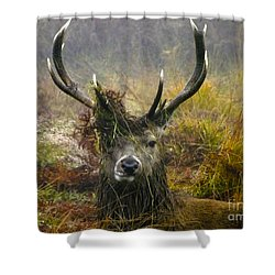 Stag Party The Series The Morning After Shower Curtain