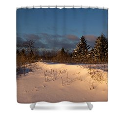 The Morning After The Snowstorm Shower Curtain by Georgia Mizuleva