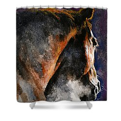 Cold Sunrise Shower Curtain