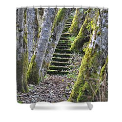 The Moss Stairs Shower Curtain by Kirt Tisdale