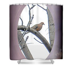 The Mourning Dove Shower Curtain by Patricia Keller