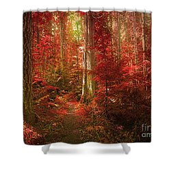 The Mystic Forest Shower Curtain