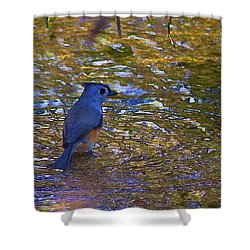 Shower Curtain featuring the photograph The Naiad by Gary Holmes