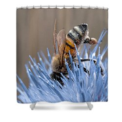 The Naturalist Shower Curtain