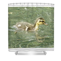 The New Addition Shower Curtain by Sara  Raber