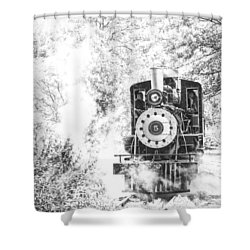 The Number Five Shower Curtain by Karol Livote