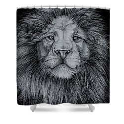 The Old Lion Shower Curtain by Jean Cormier