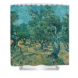 The Olive Grove Shower Curtain by Vincent van Gogh