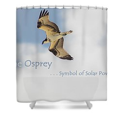 Shower Curtain featuring the photograph The Osprey by DigiArt Diaries by Vicky B Fuller