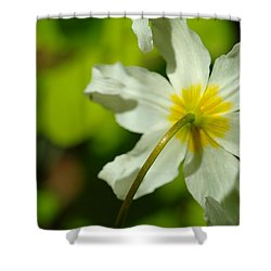 The Other Side Of Beauty Shower Curtain by Jeff Swan