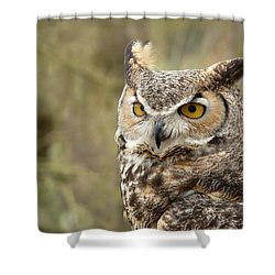 Shower Curtain featuring the photograph The Owl by Lucinda Walter