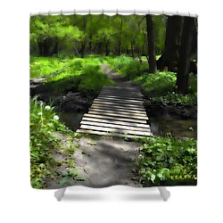 The Painted Forest From The Series The Imprint Of Man In Nature Shower Curtain by Verana Stark