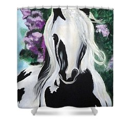 The Painted One Shower Curtain