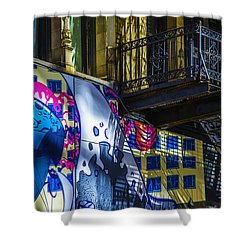 The Painted Stair Shower Curtain