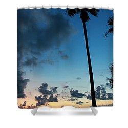 The Palm Majestic Sunset Beach Tarpon Springs Florida Shower Curtain
