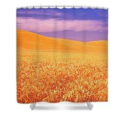 The Palouse Steptoe Butte Shower Curtain