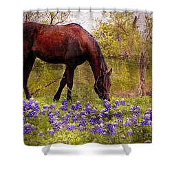 Shower Curtain featuring the photograph The Pasture by Kathy Churchman
