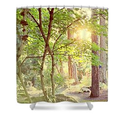 The Path Of Light Shower Curtain