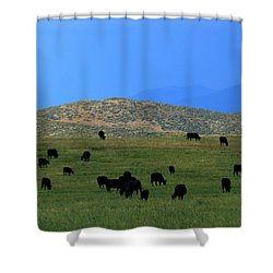 The Peaceful Pasture  Shower Curtain